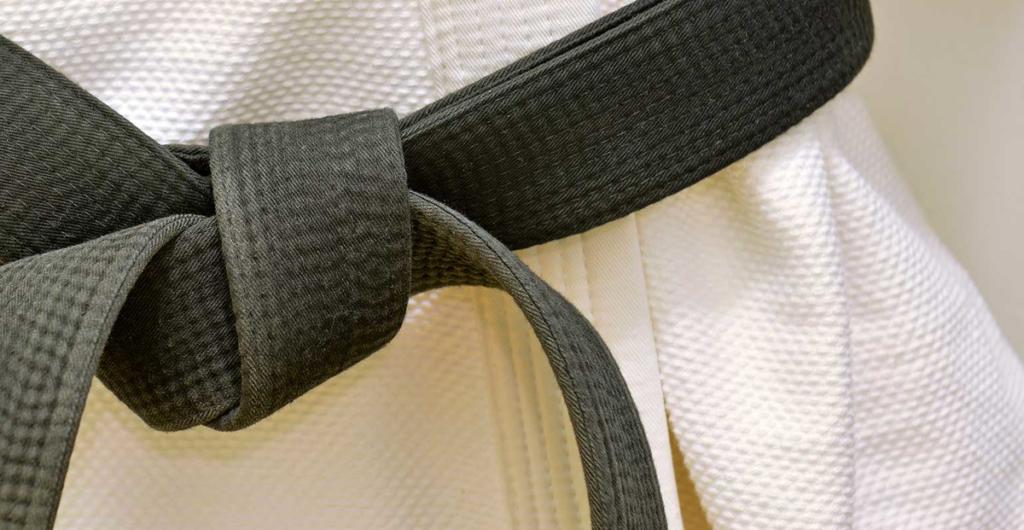 LSS Michigan- Lean Six Sigma Black Belt