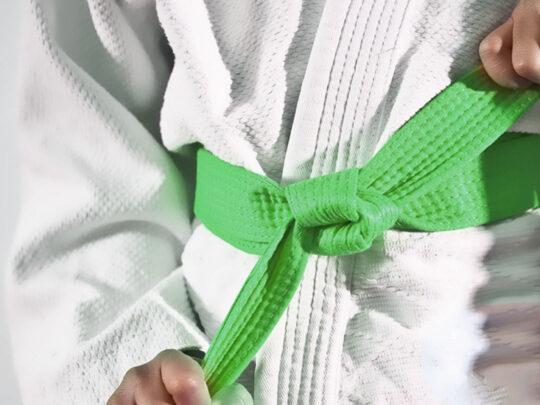 LSS Michigan- Lean Six Sigma Green Belt
